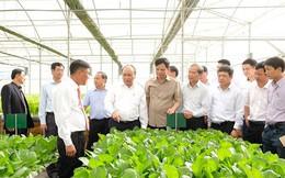 Sáng nay, Thủ tướng dự hội nghị thúc đẩy doanh nghiệp đầu tư vào nông nghiệp