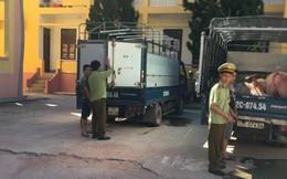 Heo Trung Quốc tuồn vào Việt Nam