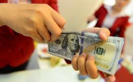 Giá USD ngân hàng quay đầu giảm mạnh