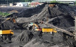 TKV tiêu thụ 685.348 tấn Alumina