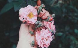 Bạn ôm một bó hồng, người ta chỉ ngưỡng mộ hoặc chê bai hoa hồng đẹp xấu, chẳng ai quan tâm tay bạn gai đâm rướm máu