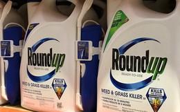 Monsanto trúng đòn mạnh