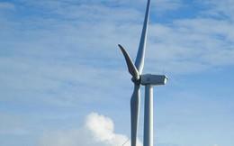 Bạc Liêu phát triển du lịch năng lượng tái tạo