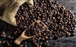 Giá cà phê xuất khẩu tháng 7/2018 tiếp tục giảm