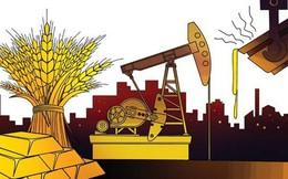 Thị trường hàng hóa ngày 14/8: Giá thép tăng vọt lên cao nhất 6 năm