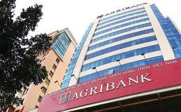 7 tháng đầu năm, Agribank xử lý được hơn 5.100 tỷ đồng nợ xấu