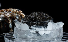 """""""Hạt ngọc trai của biển cả"""": Món ăn xa xỉ chỉ dành cho giới đại gia"""