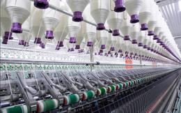 Fortex (FTM): Trưởng BKS đăng ký mua thêm 5 triệu cổ phiếu