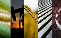 Thị trường ngày 28/8/2018: Giá dầu tăng, nguyên liệu thức ăn chăn nuôi giảm mạnh, thép đi xuống ngày thứ 4 liên tiếp
