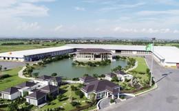 An Phát Holdings đăng ký mua 9 triệu cổ phiếu AAA từ cổ đông sáng lập