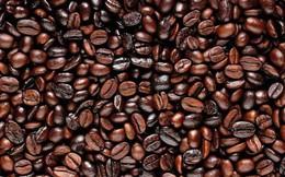 Sức ép bán hàng vụ mới kéo giảm giá cà phê