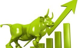 Đà tăng lan tỏa trên diện rộng, Vn-Index tiến sát mốc 1.000 điểm