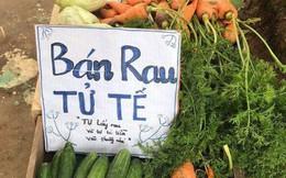 Việc tử tế dễ thuơng nhất hôm nay: Bán rau sạch tự nhiên, người mua rau tự bỏ tiền vào thùng!