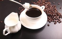 Dự báo từ nay đến cuối năm 2018 giá cà phê và cacao sẽ tăng, đường khó thoát giảm
