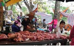 Giá thịt lợn còn duy trì ở mức cao trong thời gian dài?