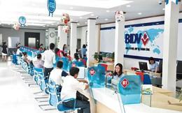 Ai thay ông Phan Đức Tú phụ trách Ban điều hành BIDV?