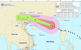 Bão số 6 đổ bộ vào Trung Quốc và suy yếu nhanh