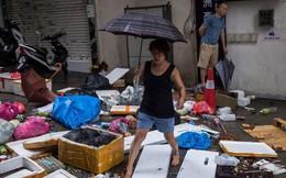 Hồng Kông bắt đầu dọn dẹp núi rác do siêu bão Mangkhut để lại