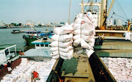 """Hàng loạt """"dây trói"""" xuất khẩu gạo được nới lỏng từ 1.10.2018: Nhiều tín hiệu mới"""