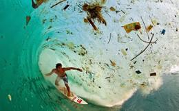 Thảm kịch từ sự tiện dụng: Đã đến lúc nhân loại phải chọn trái đất hay... trái nhựa?