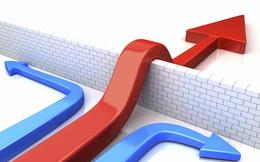 Chuyên gia BIDV đề xuất 8 giải pháp để hạn chế rủi ro, vượt qua thách thức cho nền kinh tế 2018-2019