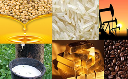Thị trường ngày 28/9: Giá xăng dầu, gạo, cà phê tăng