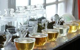 Dãy Himalaya hùng vĩ là quê hương của giống trà quý hiếm nhất của Ấn Độ: 50 triệu mới được 1kg
