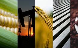 Thị trường ngày 4/9: Dầu tăng giá trở lại, thép và cao su vẫn giảm