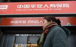 """Nghịch lý: Cổ phiếu bị nhà đầu tư nội """"ghét cay ghét đắng"""" nhưng khối ngoại săn đón ở Trung Quốc"""