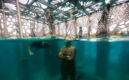 Khám phá phòng trưng bày nghệ thuật thủy triều độc đáo tại Maldives - thiên đường hạ giới ai cũng nên đến một lần trong đời