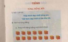 Dạy học trò đọc chữ theo ô vuông, Tổng Thư ký Hội Ngôn ngữ học VN: 'Trò khó tiếp nhận, cô giáo vất vả'