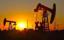 """""""Bong bóng"""" dầu đá phiến của Mỹ đang xẹp dần?"""