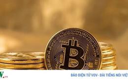 Coi Bitcoin là công cụ kinh doanh, 95% doanh nghiệp thất bại?