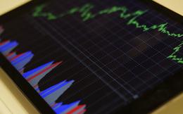 2 nhân tố đặc biệt nhà đầu tư cần lưu tâm