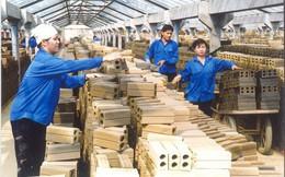 Dừng đầu tư mới, đầu tư mở rộng các cơ sở sản xuất gạch đất sét nung