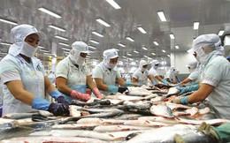 Việt Nam khiếu nại lên WTO về thuế nhập khẩu của Mỹ với cá Việt Nam