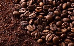 Dự trữ cà phê thế giới vụ 2017/18 có thể rơi xuống mức thấp nhất 5 năm