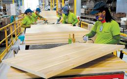 Ngành gỗ xuất siêu gần 5,5 tỷ USD