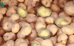 """Nông sản nhập khẩu """"đội lốt"""" hàng Việt: Cần xử lý mạnh tay"""