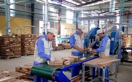 Quy định tạm ngừng kinh doanh tạm nhập, tái xuất gỗ từ Lào, Campuchia