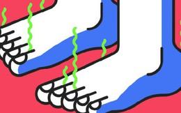Khoa học chứng minh: Đi giày không đi tất thà đi chân đất còn hơn!