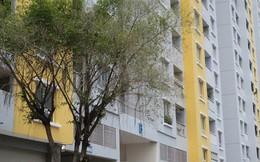 Vụ cháy chung cư Carina: Cựu Tổng giám đốc Công ty Hùng Thanh được tại ngoại