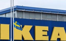 Ikea triển khai mô hình cửa hàng nhỏ, sa thải 7.500 nhân viên