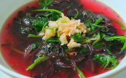 """Loại rau- vị thuốc """"quét sạch độc tố"""", chữa táo bón cực tốt: Chợ Việt rất nhiều, giá rẻ"""