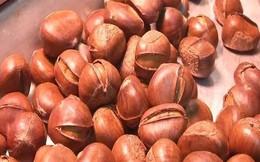 Cô gái bị chảy máu dạ dày vì ăn hạt dẻ: Bác sĩ cảnh báo hạt dẻ ngon nhưng khi ăn cần nhớ điều này