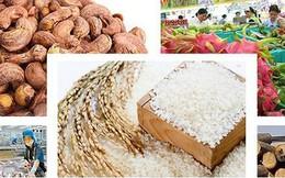 Xuất khẩu nông sản Việt Nam năm 2018 vượt kỷ lục 40 tỷ USD
