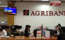 Agribank mong sớm được cổ phần hóa