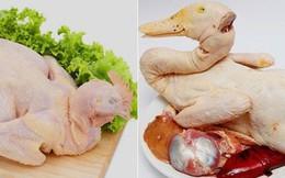 Thịt gà có bổ hơn thịt vịt: Chuyên gia dinh dưỡng chỉ điểm khác duy nhất