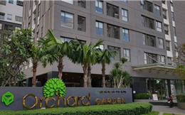 Novaland đặt mục tiêu doanh thu 18.000 tỷ năm 2019, đầu tư mạnh vào BĐS nghỉ dưỡng