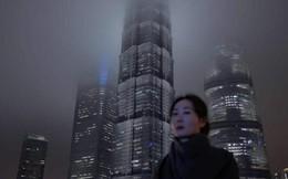 Tổng thống Trump có những đồng minh tối mật ở Trung Quốc